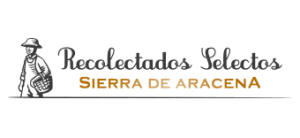 Comprar setas online. Venta de jamones ibéricos de Jabugo